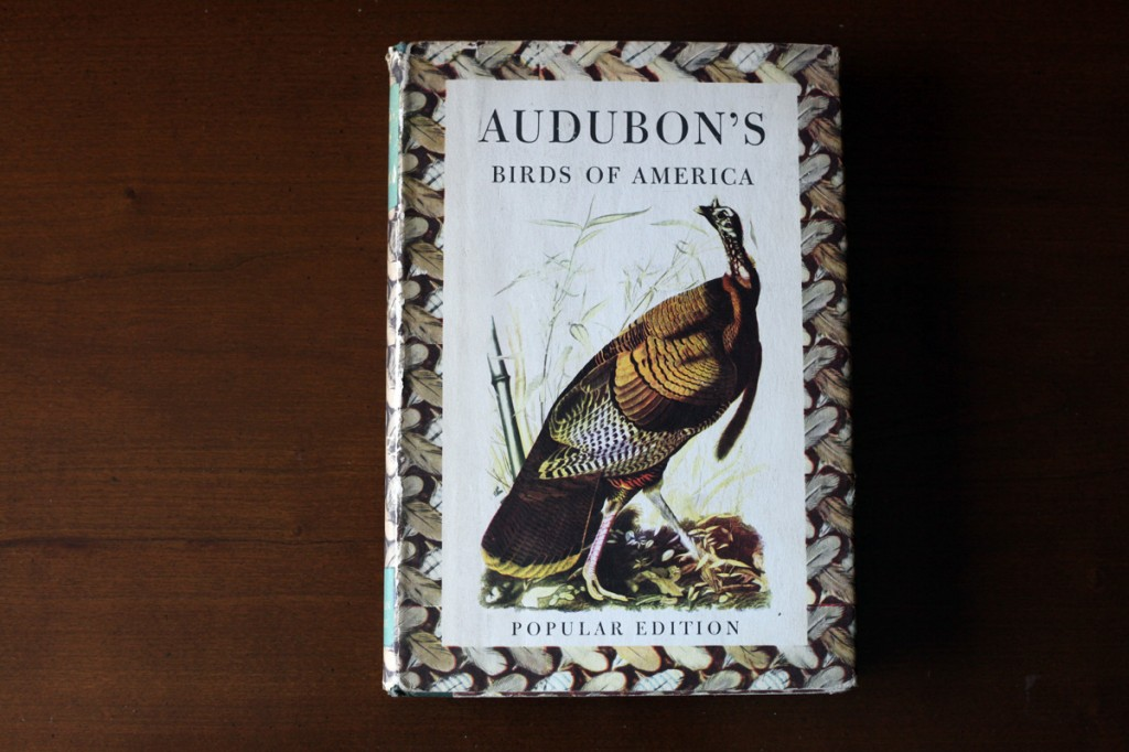 Woodward Vernacular Typography Audobon's Birds of America Hardcover Book