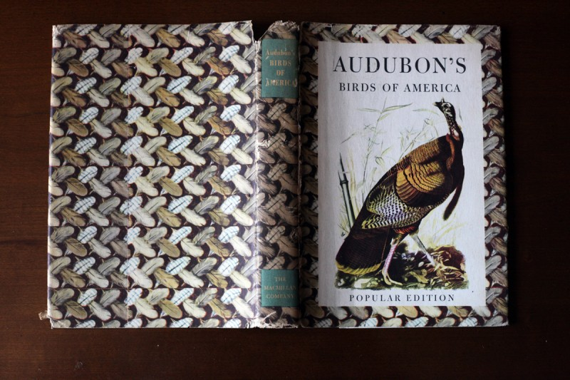 Woodward Vernacular Typography Audobon's Birds of America Dust Jacket